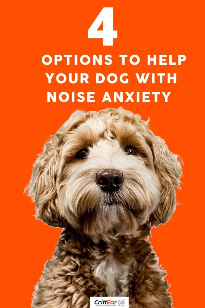 4 options to help your dog with noise anxiety - we help you out!