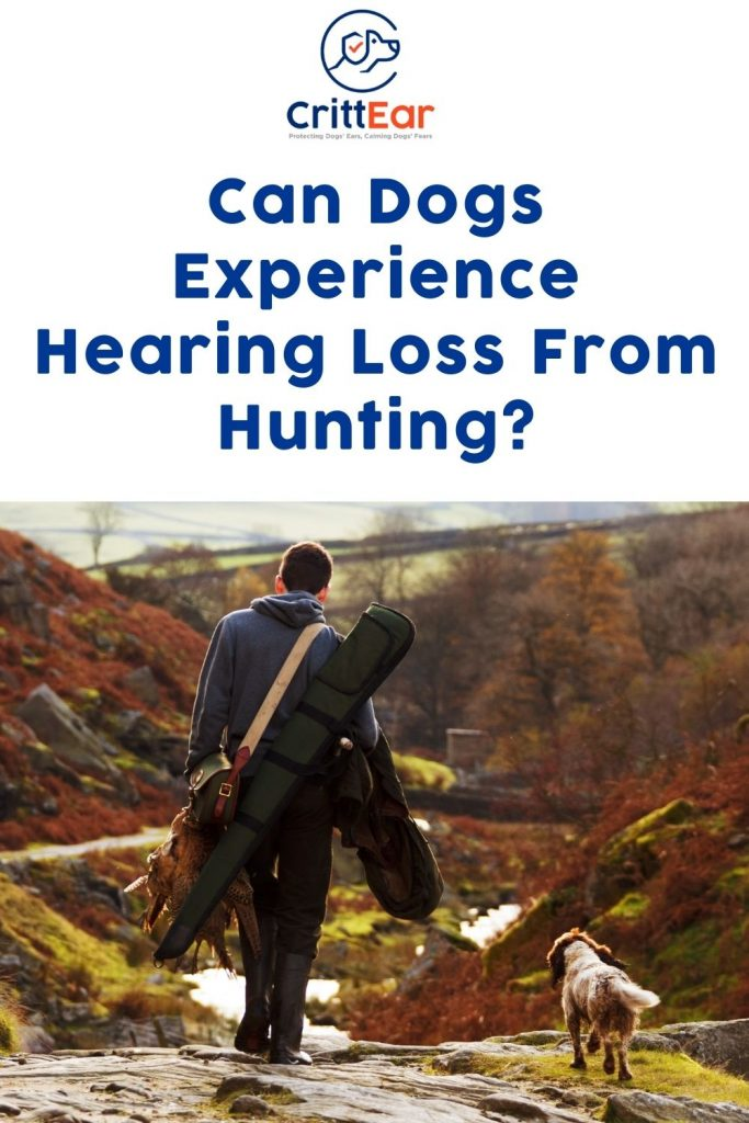 Pros and Cons of Hunting Dogs Hearing Protection Options: including over-ear and in-ear hearing protection for dogs