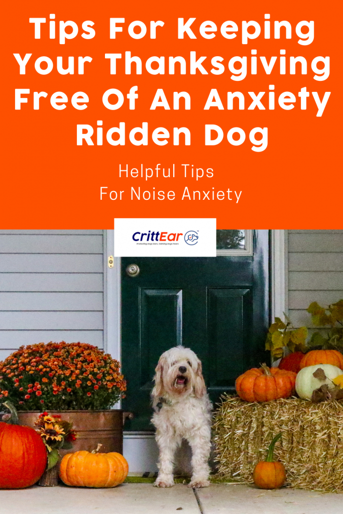 Tips for keeping your Thanksgiving free of an anxiety ridden dog! #anxiousdog #dogearplugs #earplugsfordogs
