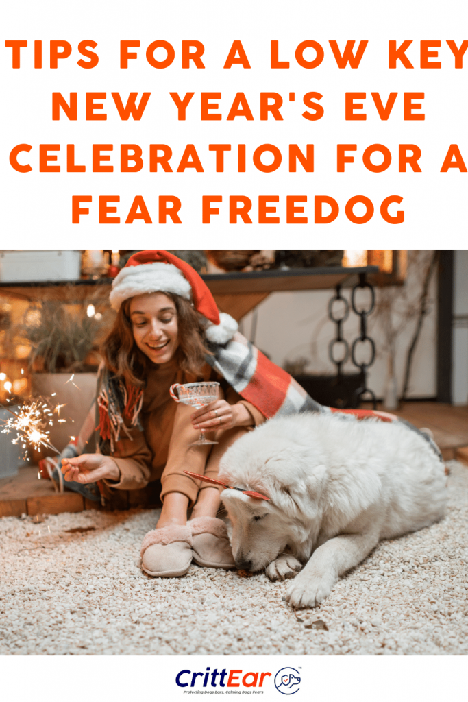 We know you want a fear free dog this New Year's Eve - our tips will help make that possible! #dogearplugs #earplugsfordogs #fireworks #NYE