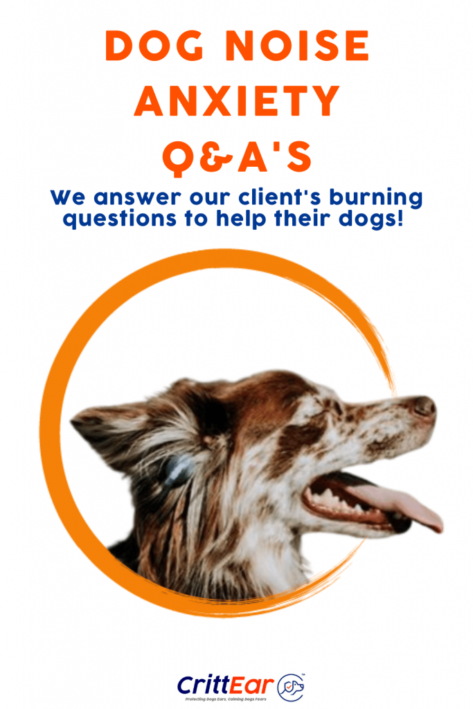Do you have a burning dog noise anxiety question that you need answered? Let us know! #dognoiseanxiety #dogearplugs