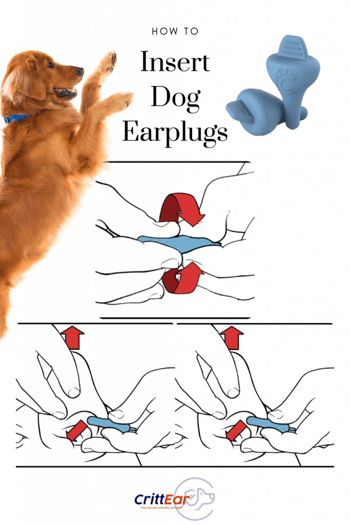 Understanding how to insert dog earplugs is key to their success! Yup, earplugs for dogs are now here! #dogearplugs #earplugsfordogs #doghearing