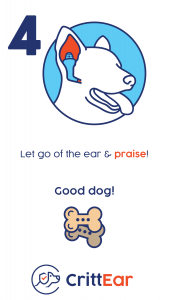 Inserting_into_Ear_Infographic_IG_Page05