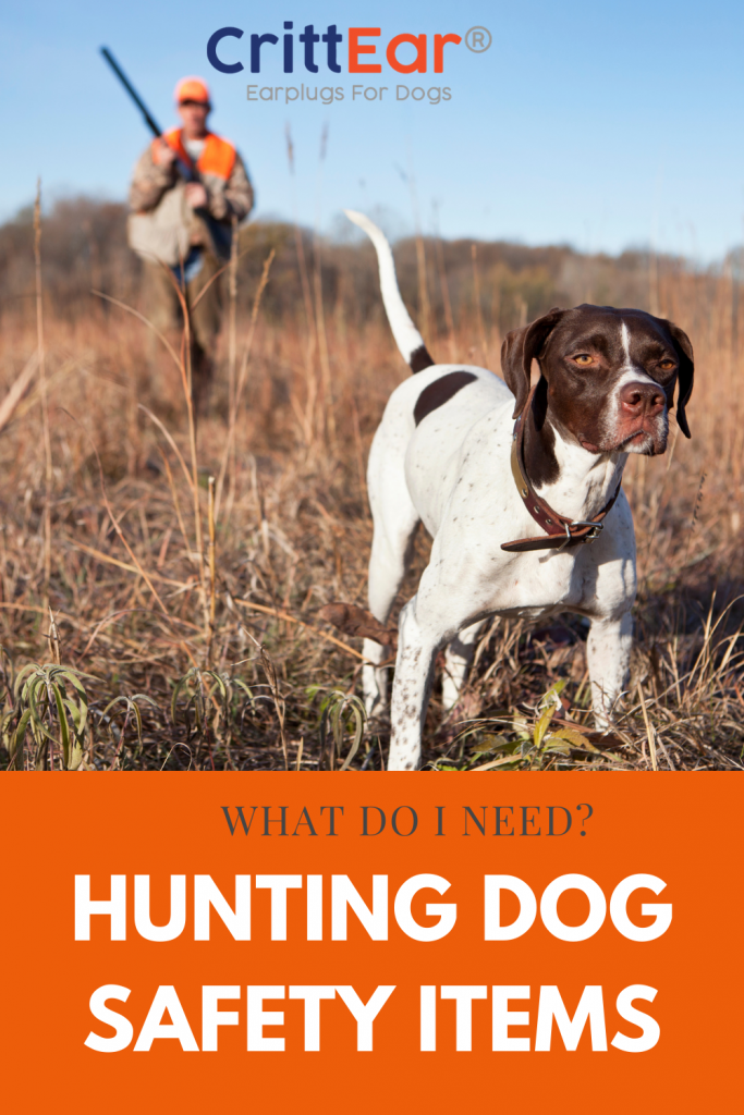 With spring around the corner we get asked a lot about hunting dogs and keeping them safe. Let's dig into what you need to consider for hunting dog safety items! #huntingdogs #birddogs #huntingdogsafety