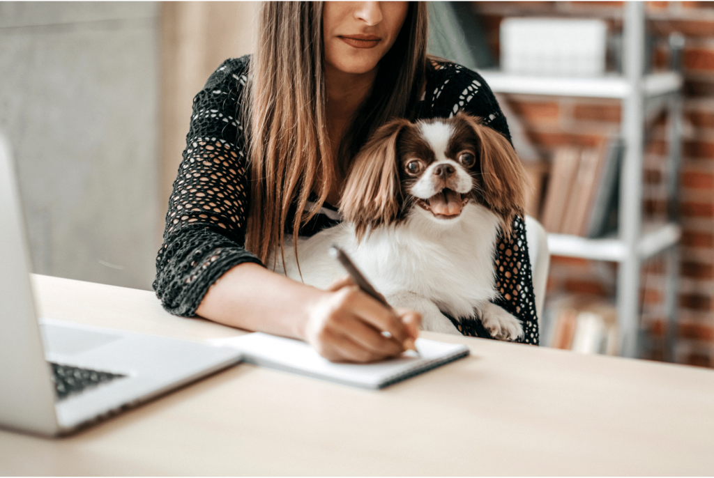 how to deal with return to work anxiety in dogs